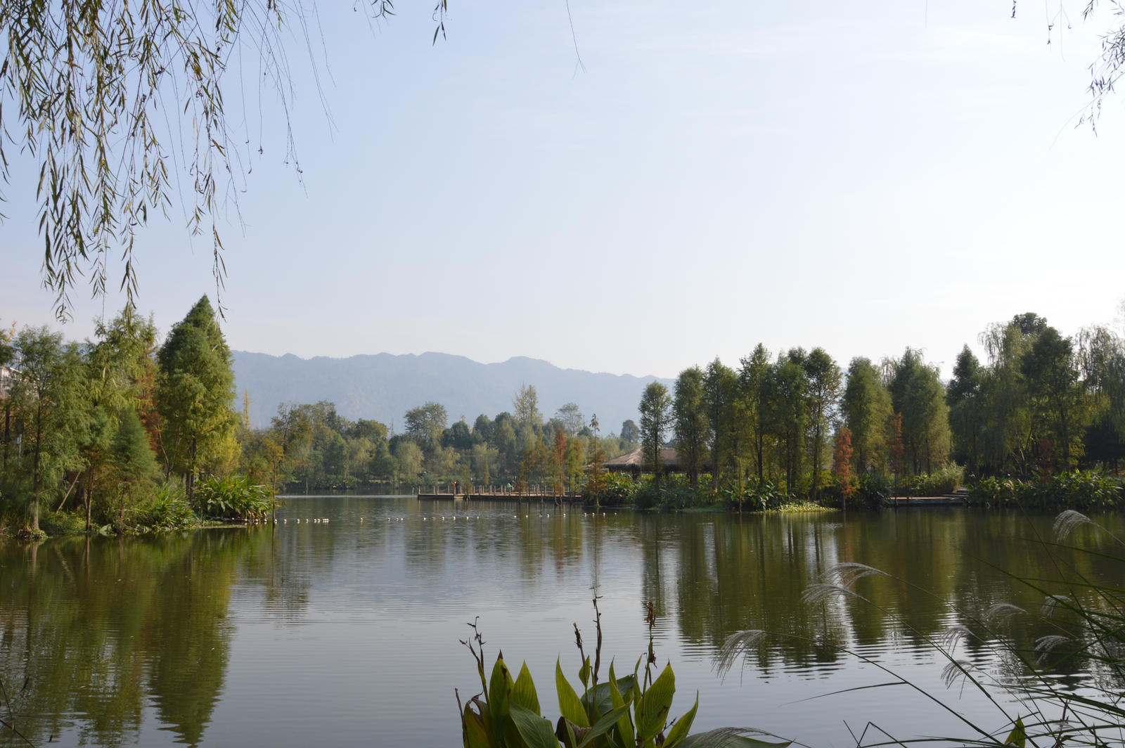 Lake in park by nismoz