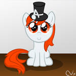 Filly Karma with Top Hat