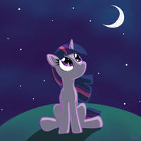 Twilight and the night