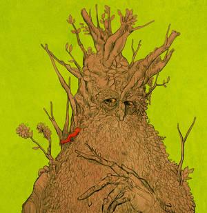 treebeard by jubah