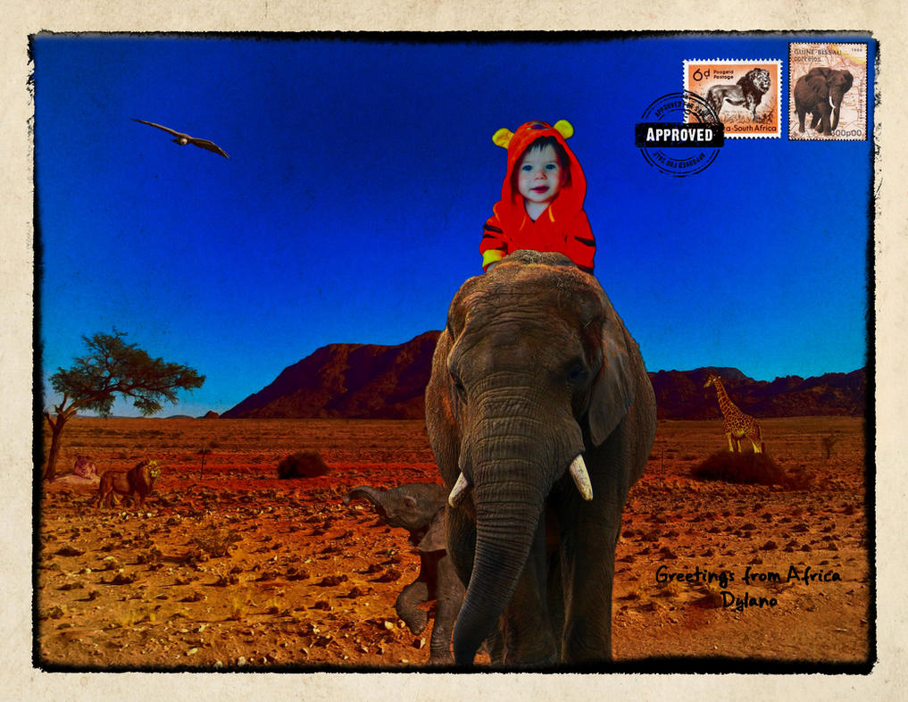 Greetings from africa by wimmeke63 on deviantart greetings from africa by wimmeke63 m4hsunfo