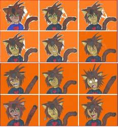 Tumblr Expression sheet by Neko-Ryuu