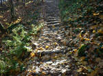 Autumn leaves on the stairs