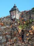 Autumn streetlamp