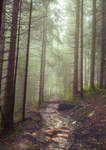 Colorful forest premade background 3