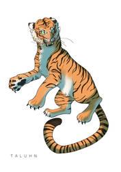 [COMM] Tiger