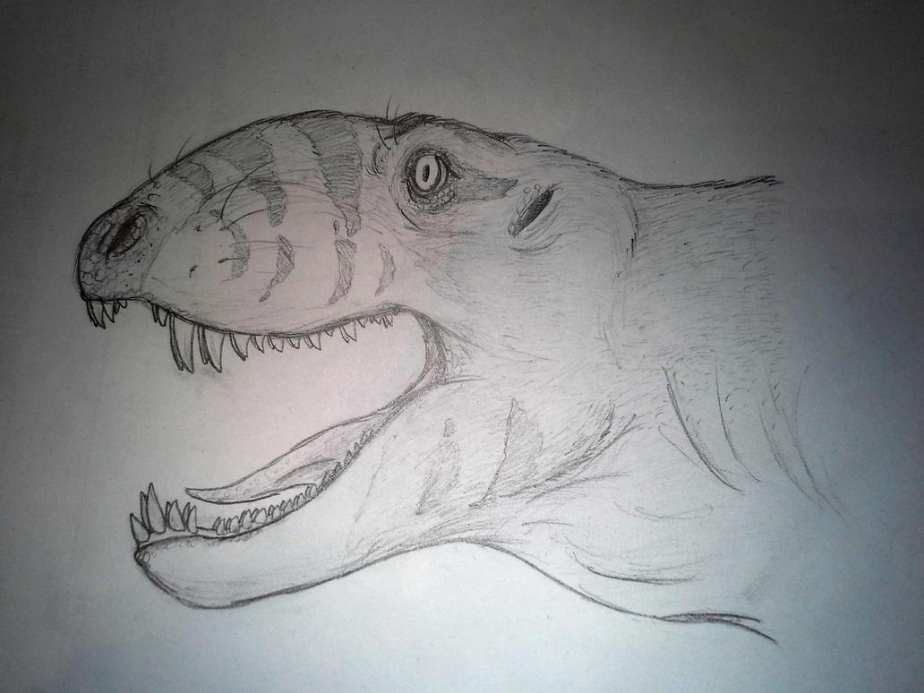 Dimetrodon sketch by SporemasterHIMPO