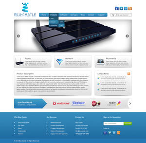 Blue Castle Website Design