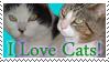 I love Cats: Stamp