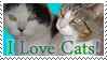 I love Cats: Stamp by Katze-Cat-KuroNeko