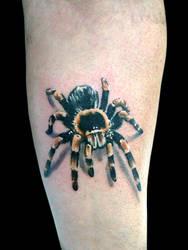 Tarantula by maximolutztattoo