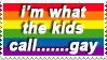 this is......a d v a n c e d gayness