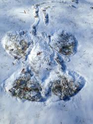 Snow Angel by Discworldgod