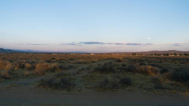 Desert Final 1