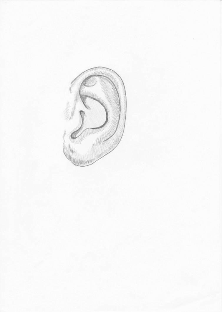 Ear by Pepples93