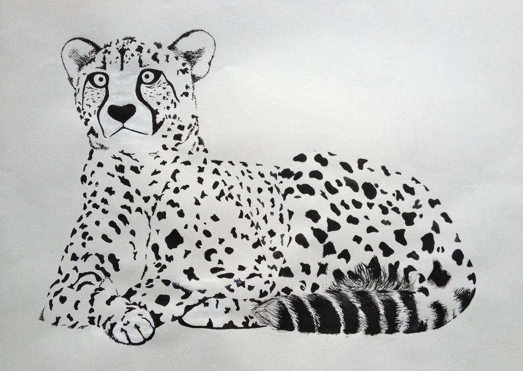 Cheetah by Pepples93