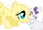 Pony and A Cat Base