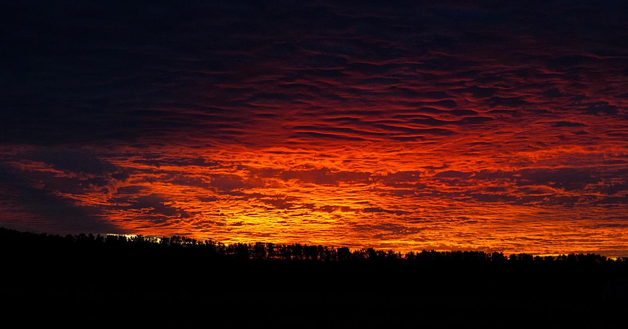 Sunset by halfhandau