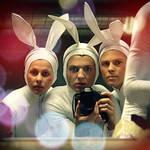 Rabbits Party