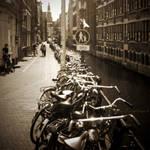 Parkin' Lane by HomoColoris
