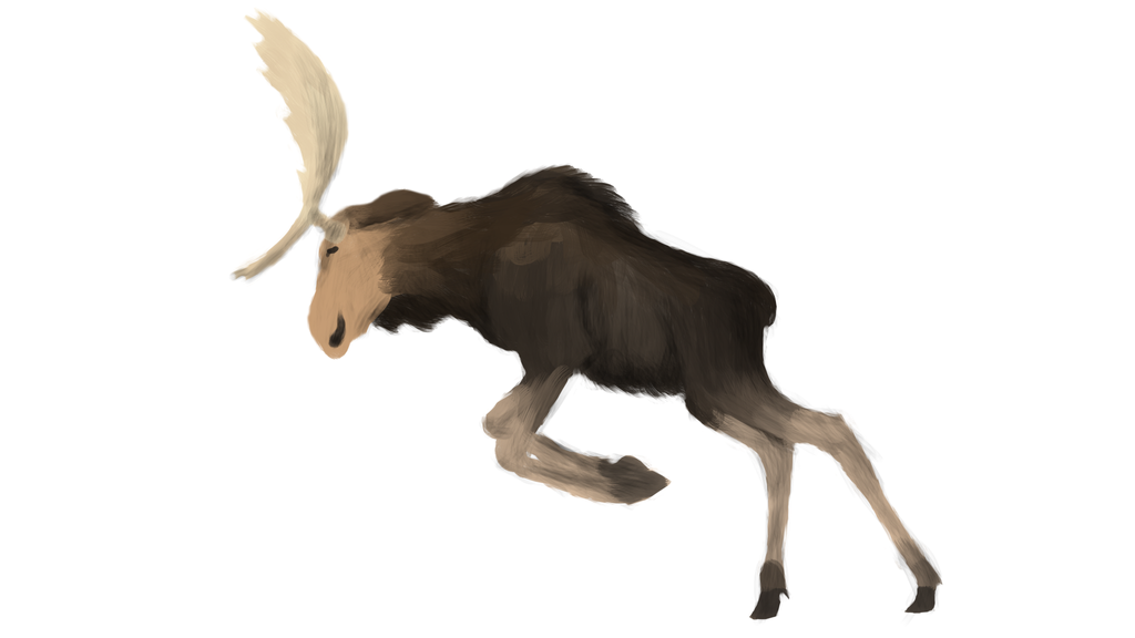 Moose practise, as usual. by Prototype-LQ