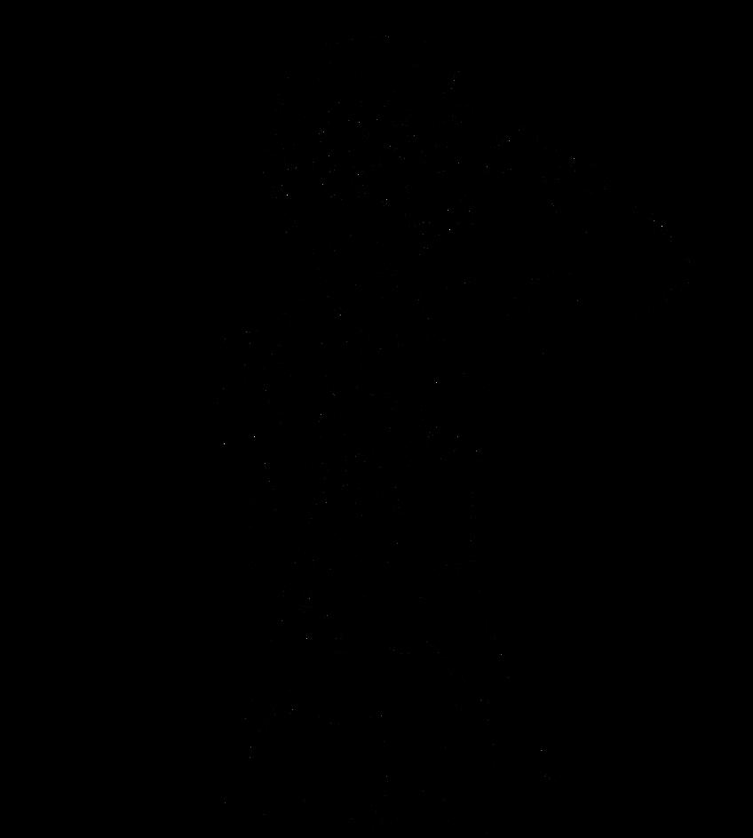 Раскраска с сиэлем