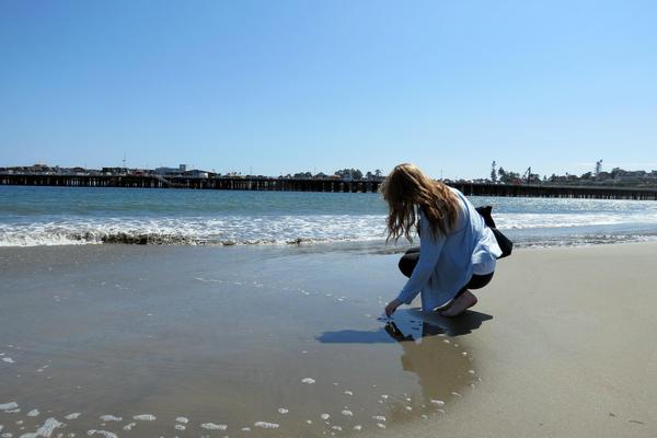 Searching for Shells in Santa Cruz
