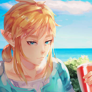 Link's Day Off