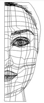 Vector Face Mesh by nico89-fx