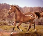 Desert Maiden by Fainalotea