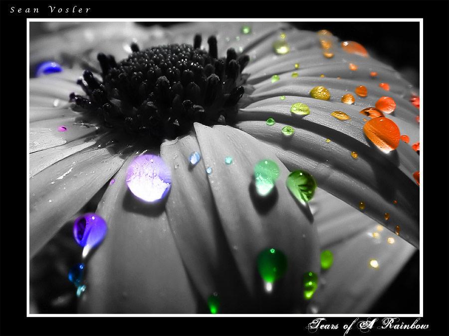 .: Rainbow Tears :. by sixstring7