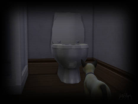 TS4: Toilet Cat