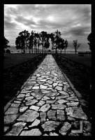 A path to Sea by ntora