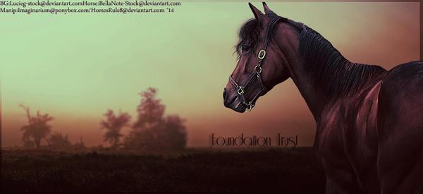 Foundation Trust [custom] by HorsesRule8