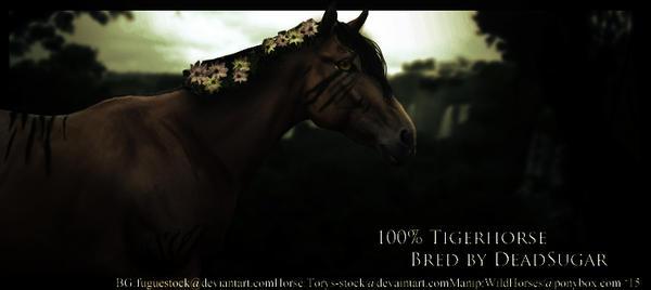 TigerHorse [custom] by HorsesRule8