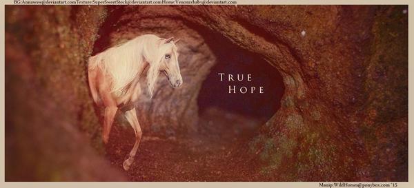 True Hope by HorsesRule8