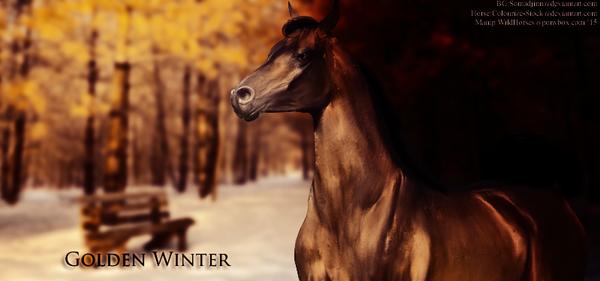 Golden Winter by HorsesRule8