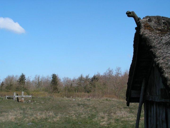 Viking village by drunkenmoosedk