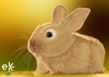 (Study) Bunny | 2015 by eelumine