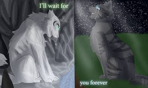 I'll Wait For You Forever by WarriorCat3042
