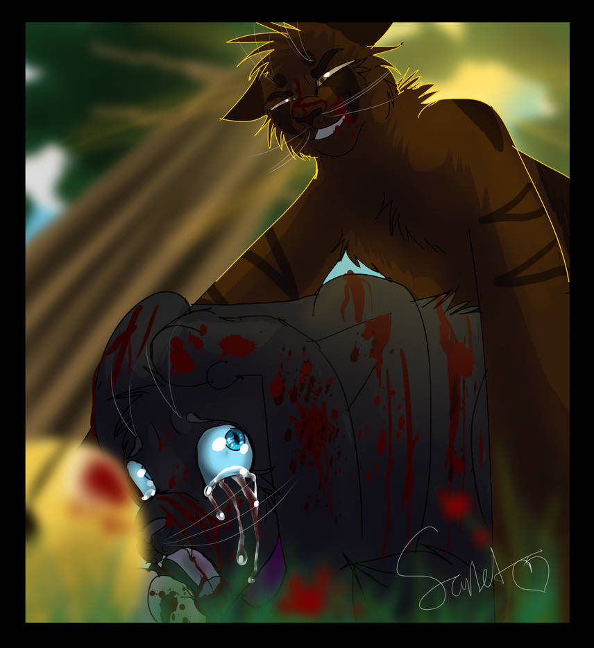 You Ll Never Forget Me Warrior Cats By Warriorcat3042 On
