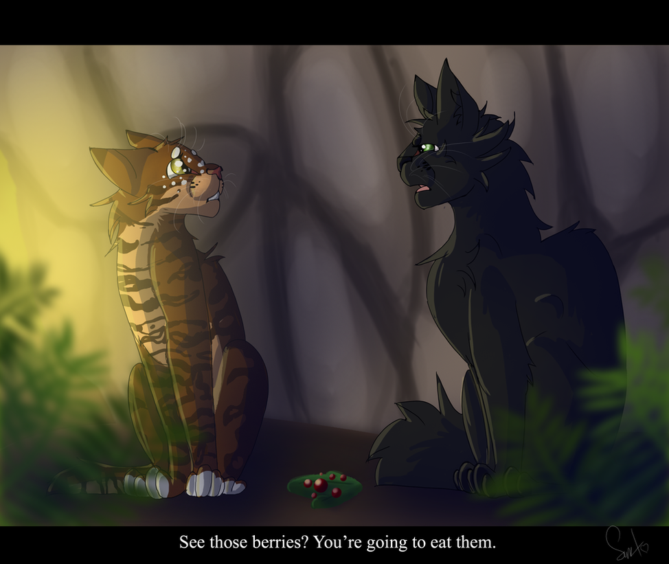Hollyleaf And Leafpool Warrior Cats By Warriorcat3042