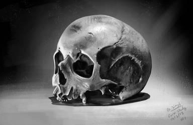 Skull study by GDSWorld