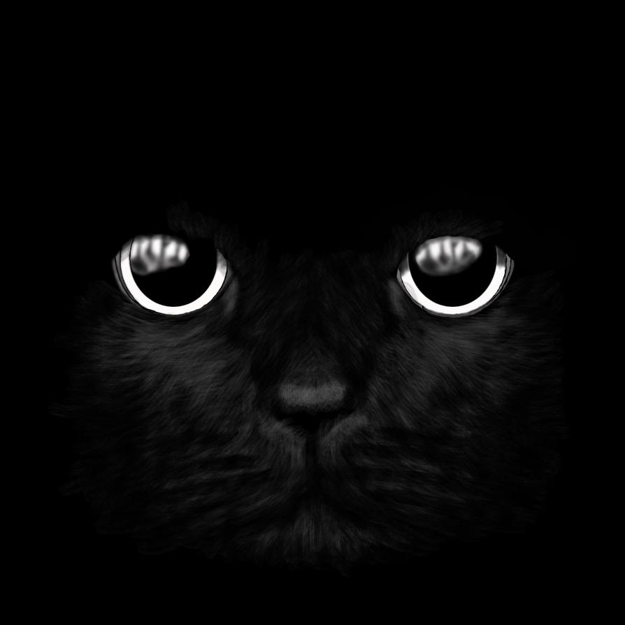 cats eyes 3 by le-damne