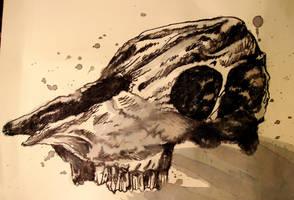 inked cow skull by SkyGazerr