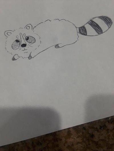 raccoon  by BMTHTori
