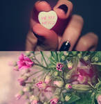 Happy Valentine's Day by SoraBelle