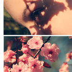 Flora's Secret by SoraBelle