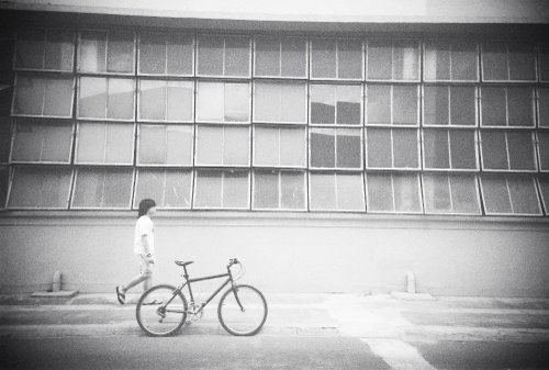 Walking Alone... by knucklebreaker