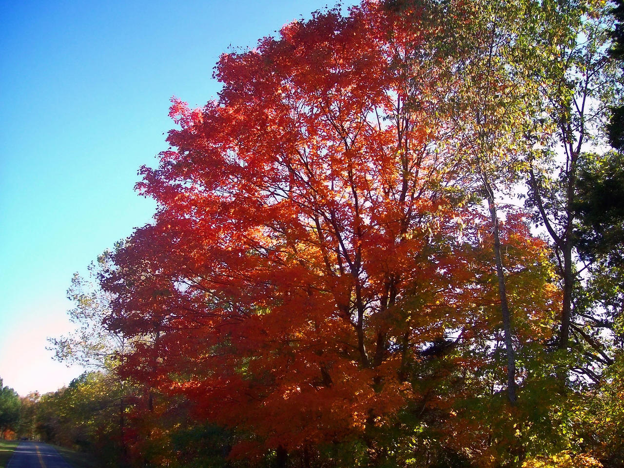 October Sights by Mistshadow2k4